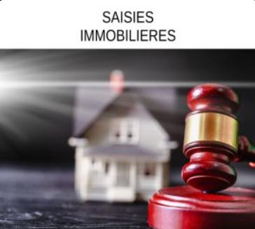 saisies_immo